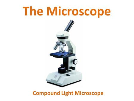 The Microscope Compound Light Microscope. I. History of the Microscope A.1400's – simple microscopes (magnifying lenses) were used. B.1590 – Hans and.