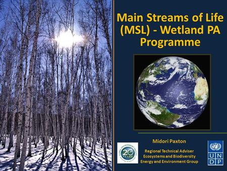 Main Streams of Life (MSL) - Wetland PA Programme Midori Paxton Regional Technical Adviser Ecosystems and Biodiversity Energy and Environment Group.