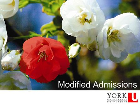 Modified Admissions. Across the system Categories Admissions information – documentation and deadlines To identify or not to identify… Support available.