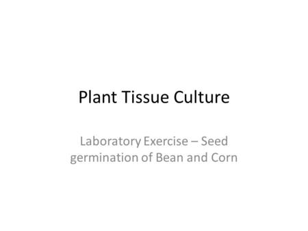 Plant Tissue Culture Laboratory Exercise – Seed germination of Bean and Corn.