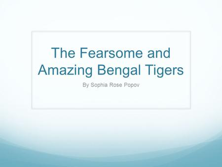 The Fearsome and Amazing Bengal Tigers By Sophia Rose Popov.