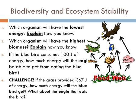 Biodiversity and Ecosystem Stability 1. Which organism will have the lowest energy? Explain how you know. 2. Which organism will have the highest biomass?