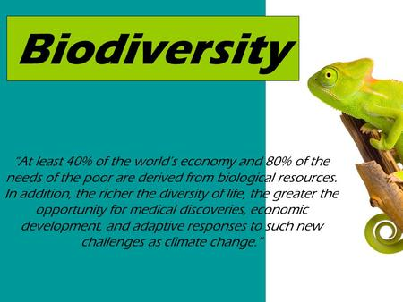 "Biodiversity ""At least 40% of the world's economy and 80% of the needs of the poor are derived from biological resources. In addition, the richer the diversity."