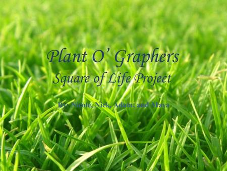 Plant O' Graphers Square of Life Project By: Nicole, Nick, Adam, and Maya.