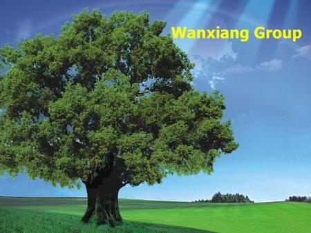 Wanxiang Group.