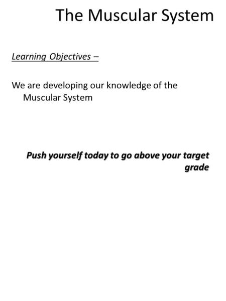 The Muscular System Learning Objectives – We are developing our knowledge of the Muscular System Push yourself today to go above your target grade.