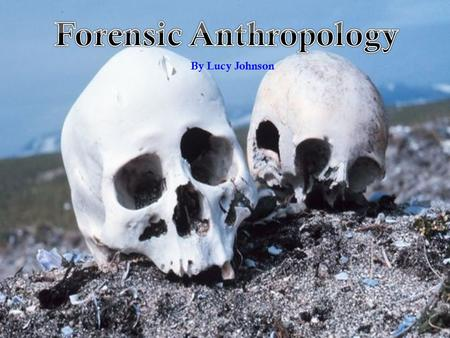 "Forensic Anthropology By Lucy Johnson. Forensic Anthropology ""Forensic anthropology is the examination of human skeletal remains for law enforcement agencies."