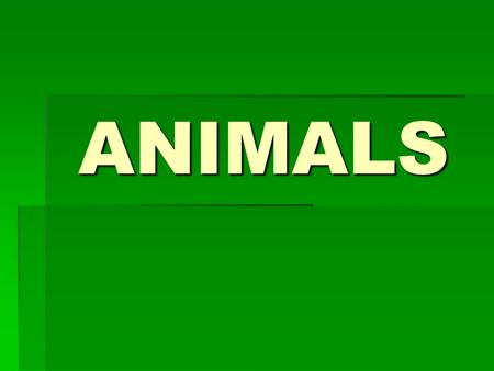 ANIMALS. PET cat WILD ANIMAL cobra crocodile FARM ANIMAL hen.