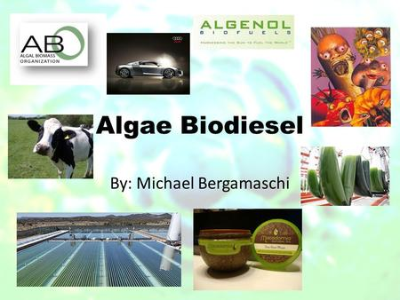 Algae Biodiesel By: Michael Bergamaschi. Overview History of algae Current state of algae Organizations Pros/Cons Project 1-Solix Project 2-OriginOil.