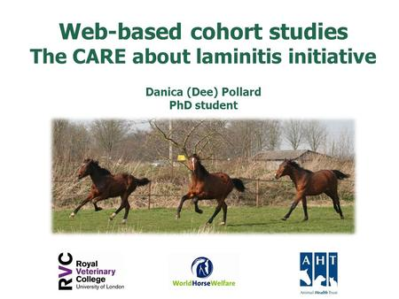 Web-based cohort studies The CARE about laminitis initiative Danica (Dee) Pollard PhD student.