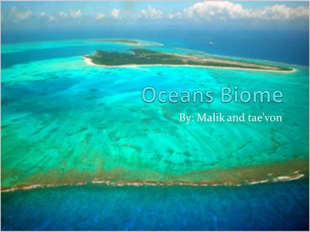 By: Malik and tae'von. Biome The oceans hold the largest holds the largest of Earth's biomes. It covers 70% of the planet's surface. Sunlight breaks through.