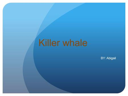 Killer whale BY: Abigail ORCAS O RCAS are very interesting animals. That is why I chose to do a report on them. I think that the way they act and figure.