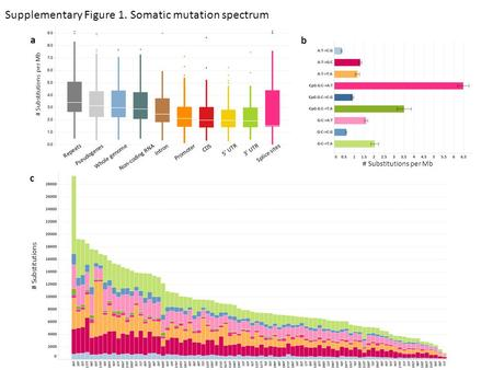 Supplementary Figure 1. Somatic mutation spectrum # Substitutions # Substitutions per Mb b c a Repeats Pseudogenes Whole genome Splice sites Non-coding.