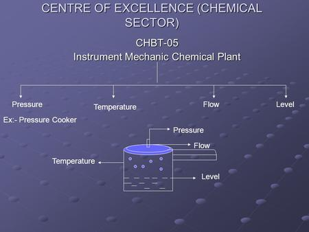 CENTRE OF EXCELLENCE (CHEMICAL SECTOR) CHBT-05 Instrument Mechanic Chemical Plant Pressure Temperature Flow Level Ex:- Pressure Cooker Level Temperature.