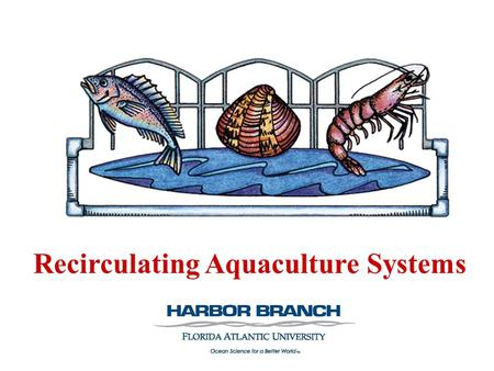 Recirculating Aquaculture Systems