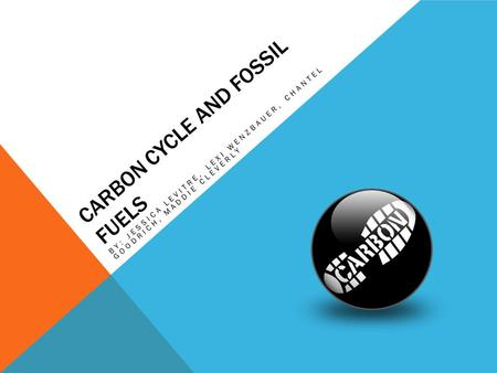 Carbon Cycle and Fossil Fuels