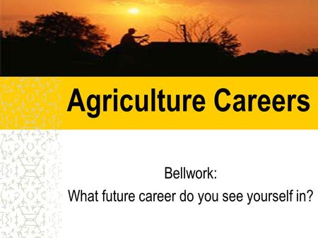 Agriculture Careers Bellwork: What future career do you see yourself in?
