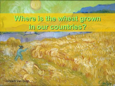 Where is the wheat grown in our countries? Vincent Van Gogh.