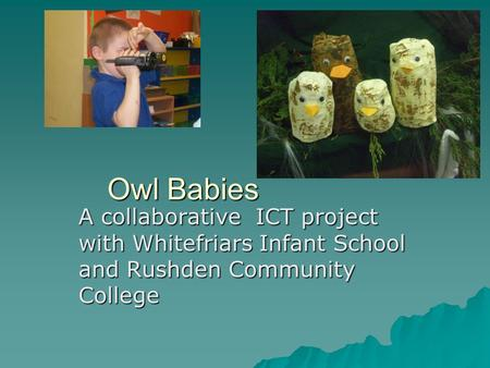 Owl Babies Owl Babies A collaborative ICT project with Whitefriars Infant School and Rushden Community College.