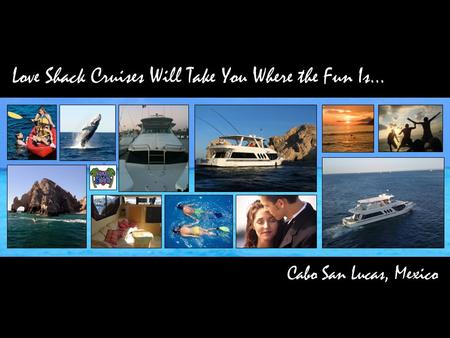 Love Shack Cruises Will Take You Where the Fun Is… Cabo San Lucas, Mexico.