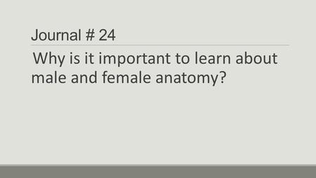 Why is it important to learn about male and female anatomy?