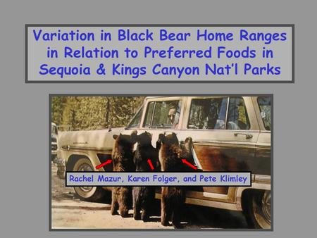 Variation in Black Bear Home Ranges in Relation to Preferred Foods in Sequoia & Kings Canyon Nat'l Parks Rachel Mazur, Karen Folger, and Pete Klimley.