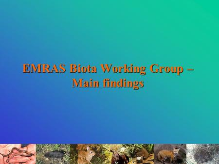EMRAS Biota Working Group – Main findings. IAEA EMRAS Biota Working Group Regular participants: Belgium - SCK·CEN; Canada – AECL; France – IRSN; Japan.