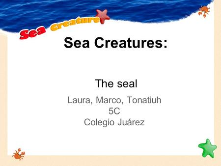 Sea Creatures: Laura, Marco, Tonatiuh 5C Colegio Juárez The seal.