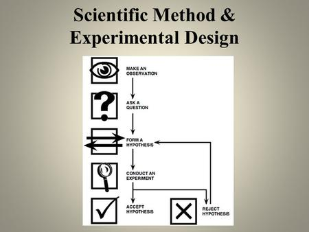 Scientific Method & Experimental Design. 1. Make broad observations about your topic (Introduction) Begin by asking questions about your topic: Why? How.