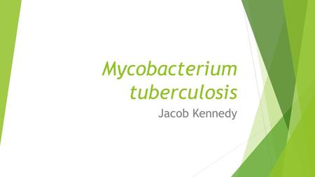 Mycobacterium tuberculosis Jacob Kennedy. Tuberculosis is a bacterial disease.