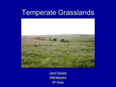 Temperate Grasslands Jack Davies Will Meyers 5 th Hour.