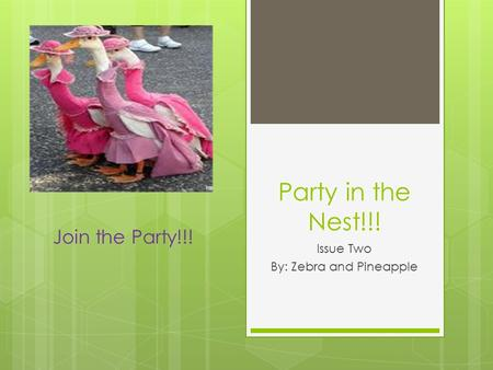 Party in the Nest!!! Issue Two By: Zebra and Pineapple Join the Party!!!