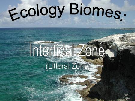 Biome Located at the junction of the atmosphere, hydrosphere, and lithosphere Zone between high tide and low tide where an abundance of marine life thrives.