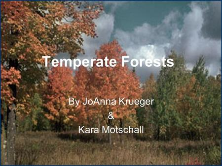 Temperate Forests By JoAnna Krueger & Kara Motschall.