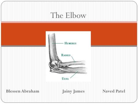 The Elbow Blessen Abraham		 Jainy James		Naved Patel.