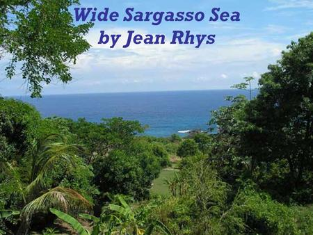 Wide Sargasso Sea by Jean Rhys. Author's background  Wide Sargasso Sea was written in 1966 by a Dominica born author Jean Rhys.  She was born in 1894.