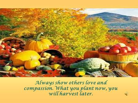 Always show others love and compassion. What you plant now, you will harvest later.