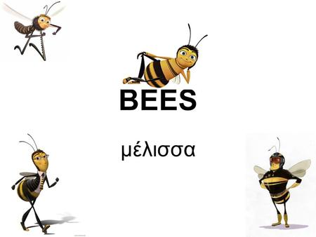 BEES μέλισσα. Bees live in colonies. Each colony contains between 15.000 and 60.000 bees…