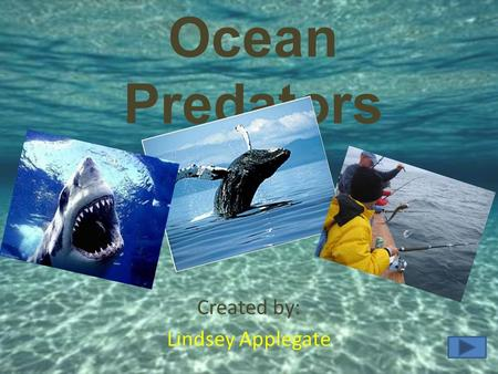 Ocean Predators Created by: Lindsey Applegate. Audience 5-6 th graders. Middle Class- Suburban Community School. Best for visual type learners. Great.