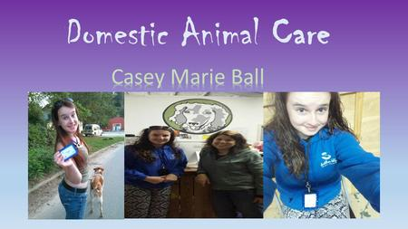 Domestic Animal Care. ~Animal abuse comes in many different types. Such as animal testing, illegal dog fighting and unintentional neglect. All of these.