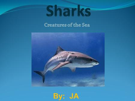 By: JA. Introduction The scientific name for Great White Shark is Carcharodon Carchias. Is it endangered? Yes it is. They live for about 20-30 years but.