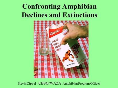 Confronting Amphibian Declines and Extinctions Kevin Zippel - CBSG/WAZA Amphibian Program Officer.