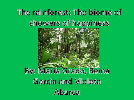 A rainforest is a dense evergreen forest with an annual rainfall of at least 406 cm (160 inches). Rainforests are often, but not always, located in tropical.