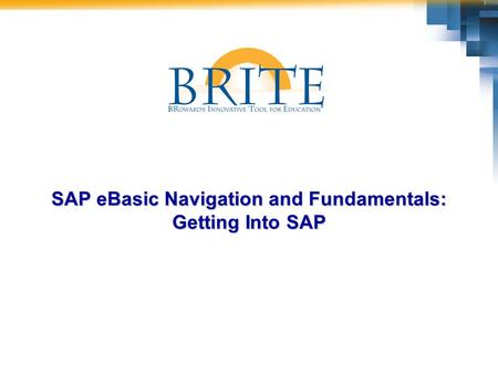 SAP eBasic Navigation and Fundamentals: Getting Into SAP