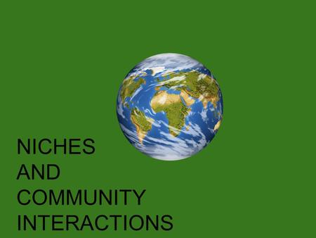 NICHES AND COMMUNITY INTERACTIONS