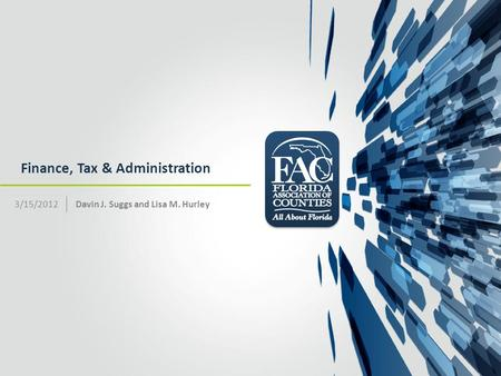 Finance, Tax & Administration Davin J. Suggs and Lisa M. Hurley3/15/2012.