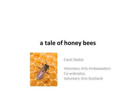 A tale of honey bees Carol Stobie Voluntary Arts Ambassadors Co-ordinator, Vol Voluntary Arts Scotland.