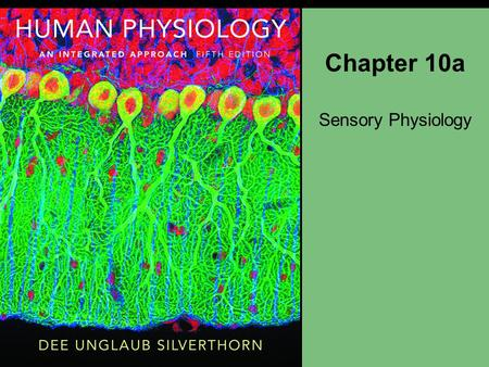 Chapter 10a Sensory Physiology. About this Chapter General properties of sensory systems Somatic senses Chemoreception: smell and taste The ear: hearing.