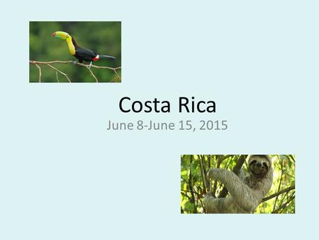 Costa Rica June 8-June 15, 2015. Most flights arrive in the evening. Interact's foreign representative will meet you in the airport lobby. Transfer.