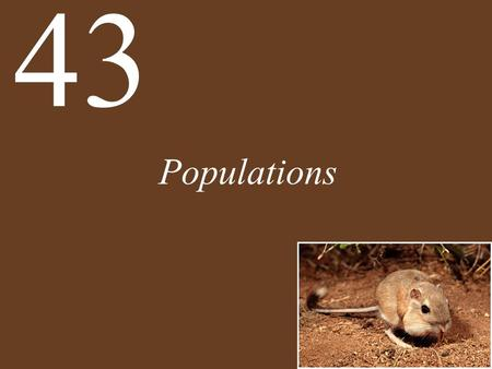 Populations 43. Chapter 43 Populations Key Concepts 43.1 Populations Are Patchy in Space and Dynamic over Time 43.2 Births Increase and Deaths Decrease.